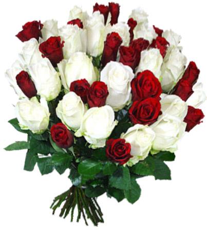 Что означает одна подаренная красная роза